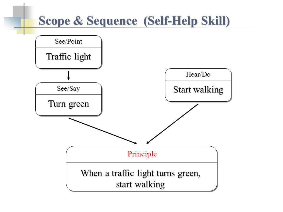 Scope & Sequence (Self-Help Skill) Start walking Hear/Do Traffic light See/Point Principle Principle When a traffic light turns green, start walking Turn green See/Say