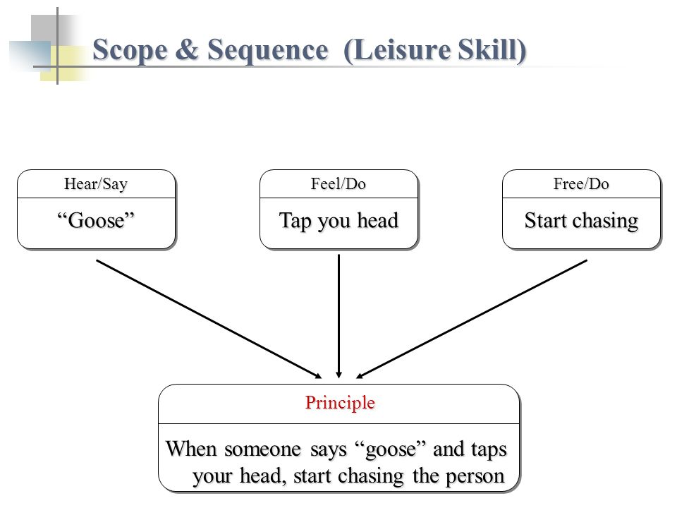 Scope & Sequence (Leisure Skill) Start chasing Free/DoGooseGooseHear/Say Principle Principle When someone says goose and taps your head, start chasing the person Tap you head Feel/Do
