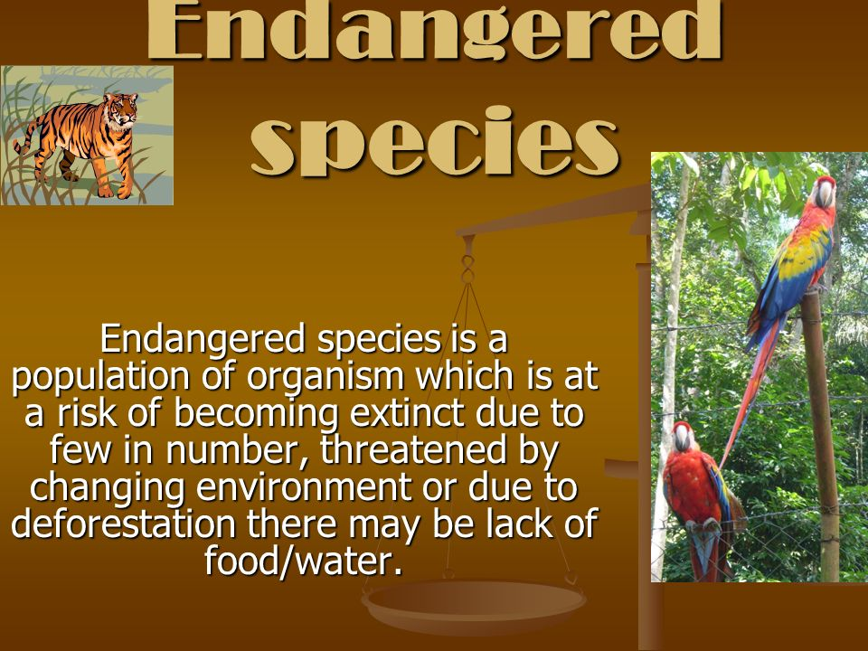 Endangered species is a population of organism which is at a risk of becoming extinct due to few in number, threatened by changing environment or due to deforestation there may be lack of food/water.