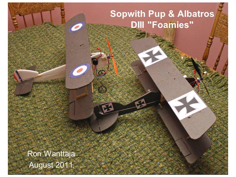 Sopwith Pup & Albatros DIII