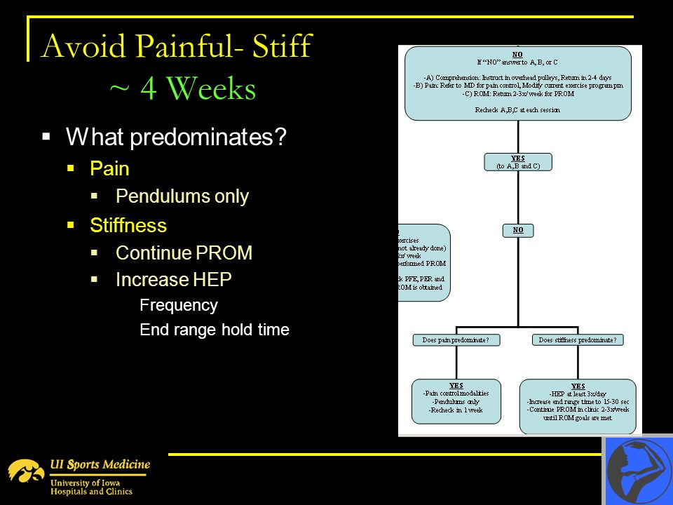 Avoid Painful- Stiff ~ 4 Weeks What predominates? Pain Pendulums only Stiffness Continue PROM Increase HEP Frequency End range hold time