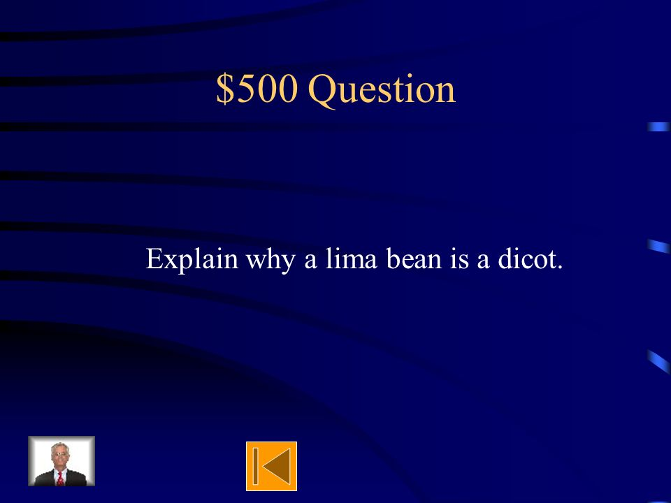 $400 Answer Seed coat, embryo, cotyledon