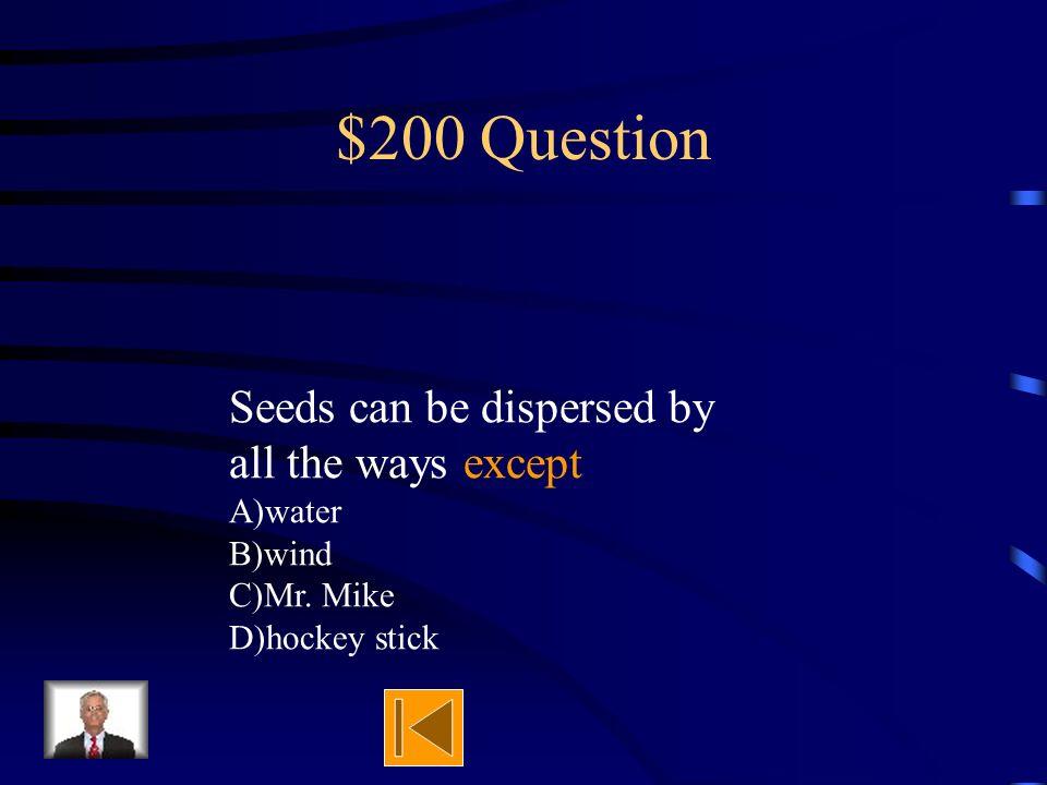 $100 Answer False