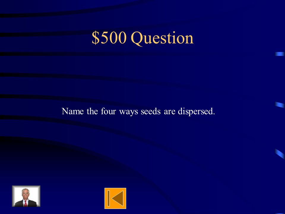 $400 Answer Wind blew seed Bird dropped seed Human dropped seed