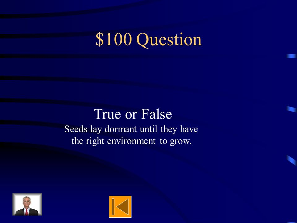 $500 Answer Wind, Water, Humans, Animals