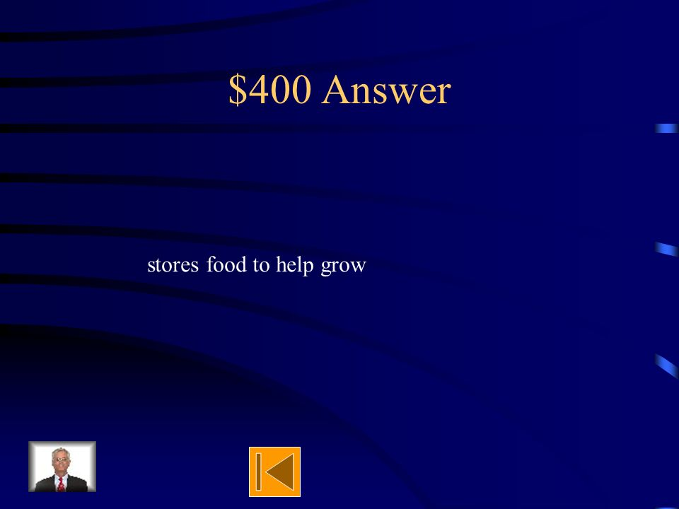 $400 Question What does the cotyledon do for the seed