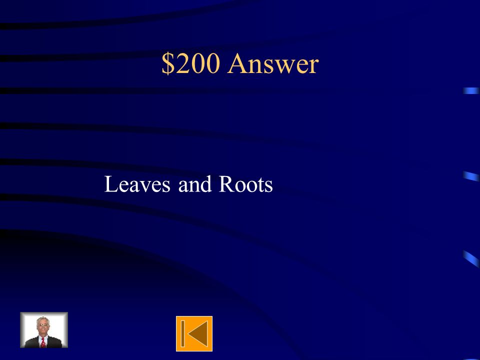 $200 Question After a seed begins to grow, next it A)grows leaves and roots B)grows its fruit C)disperses the seed D) dies