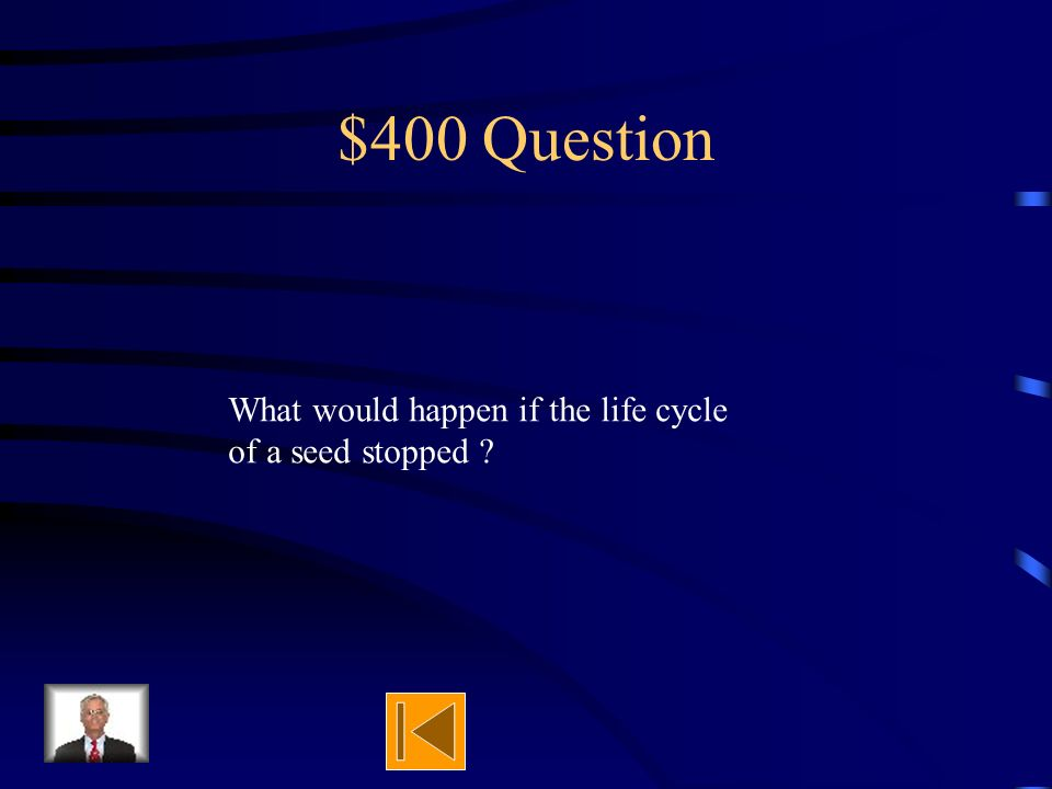$300 Answer It goes on and on