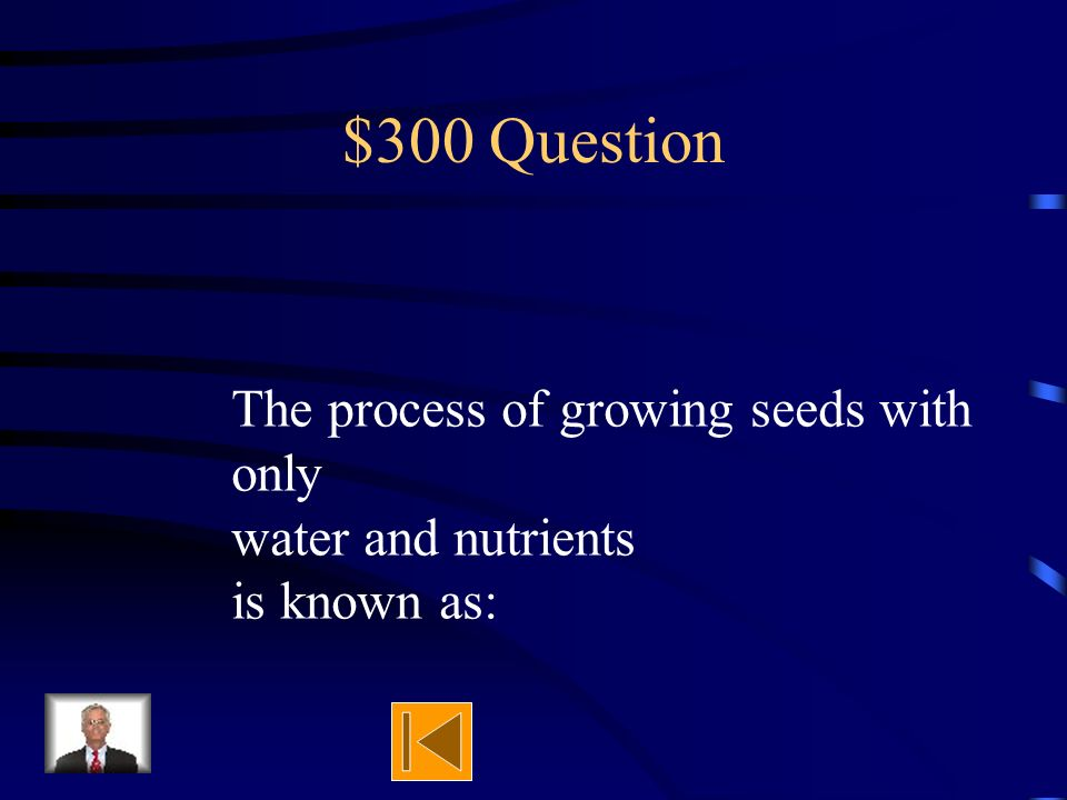 $300 Question The first thing that came out of the seed was the what?
