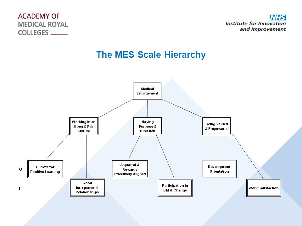 The MES Scale Hierarchy