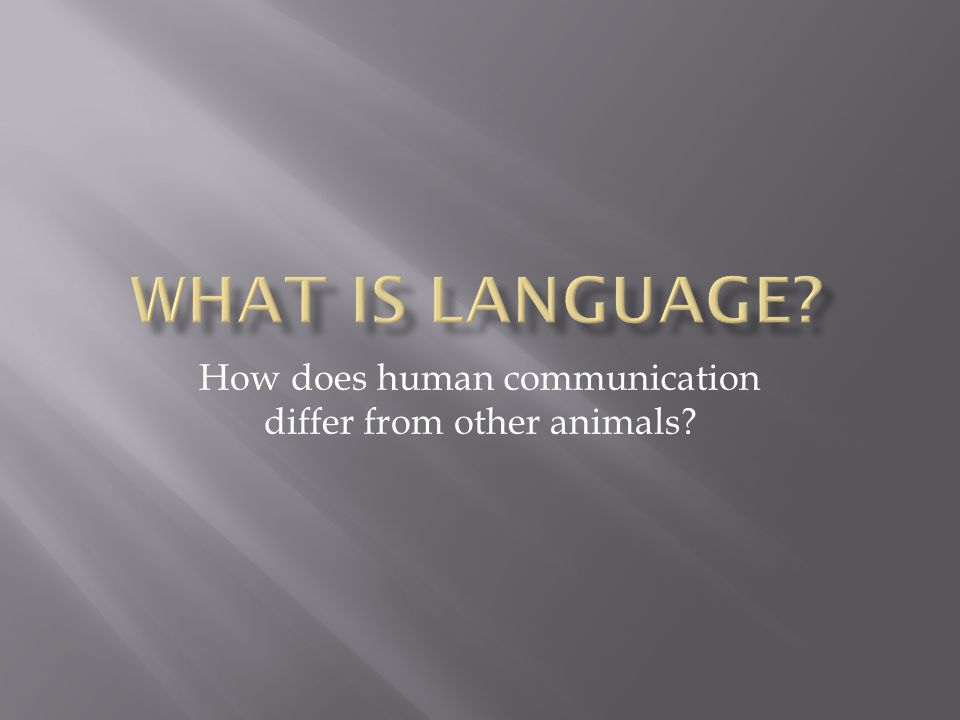 How does human communication differ from other animals