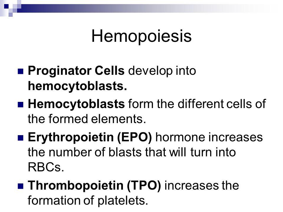 Hemopoiesis Proginator Cells develop into hemocytoblasts. Hemocytoblasts form the different cells of the formed elements. Erythropoietin (EPO) hormone
