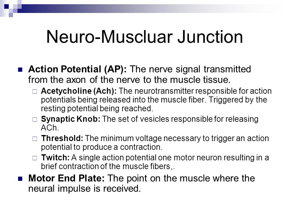 Neuro-Muscluar Junction Action Potential (AP): The nerve signal transmitted from the axon of the nerve to the muscle tissue. Acetycholine (Ach): The n