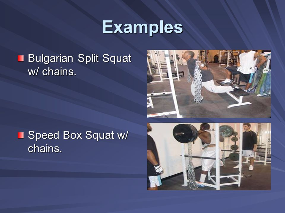 Examples Bulgarian Split Squat w/ chains. Speed Box Squat w/ chains.