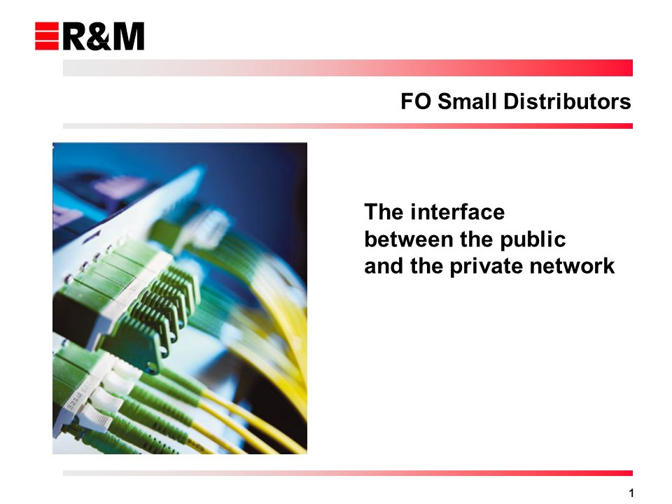 1 FO Small Distributors The interface between the public and the private network