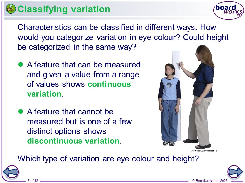 7 of 48© Boardworks Ltd 2007 Classifying variation Characteristics can be classified in different ways. How would you categorize variation in eye colo