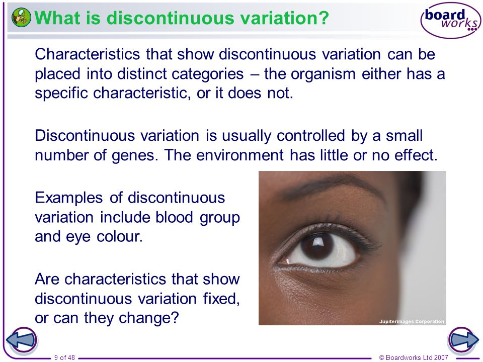 9 of 48© Boardworks Ltd 2007 What is discontinuous variation? Discontinuous variation is usually controlled by a small number of genes. The environmen