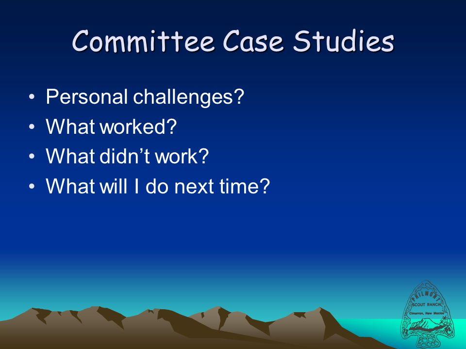 Committee Case Studies Personal challenges What worked What didnt work What will I do next time