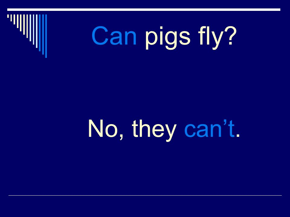 Can pigs fly No, they cant.