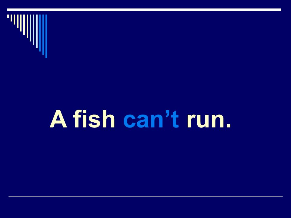 A fish cant run.