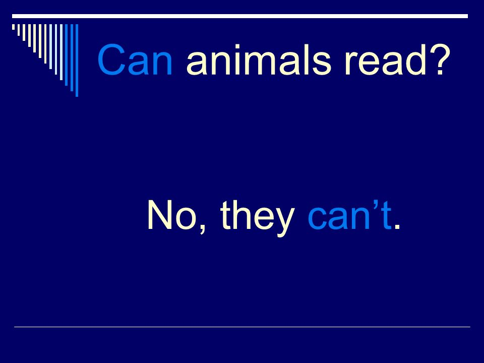 Can animals read No, they cant.