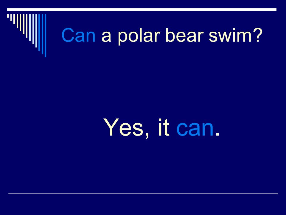 Can a polar bear swim Yes, it can.
