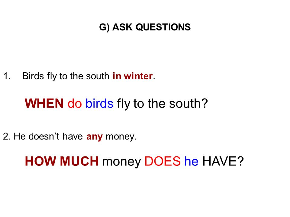 G) ASK QUESTIONS 1.Birds fly to the south in winter. 2. He doesnt have any money. WHEN do birds fly to the south? HOW MUCH money DOES he HAVE?