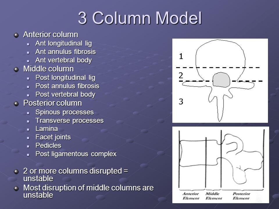 3 Column Model Anterior column Ant longitudinal lig Ant longitudinal lig Ant annulus fibrosis Ant annulus fibrosis Ant vertebral body Ant vertebral bo