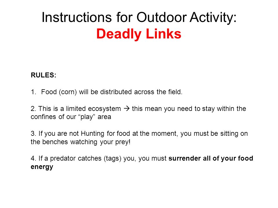 Instructions for Outdoor Activity: Deadly Links RULES: 1.Food (corn) will be distributed across the field.