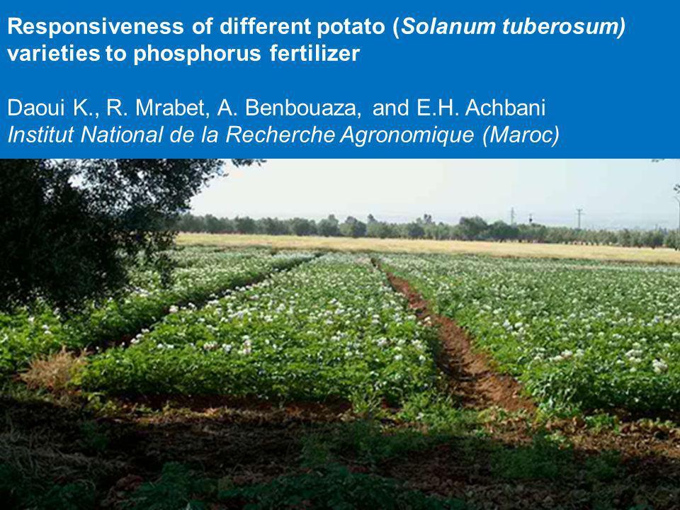 Responsiveness of different potato (Solanum tuberosum) varieties to phosphorus fertilizer Daoui K., R. Mrabet, A. Benbouaza, and E.H. Achbani Institut