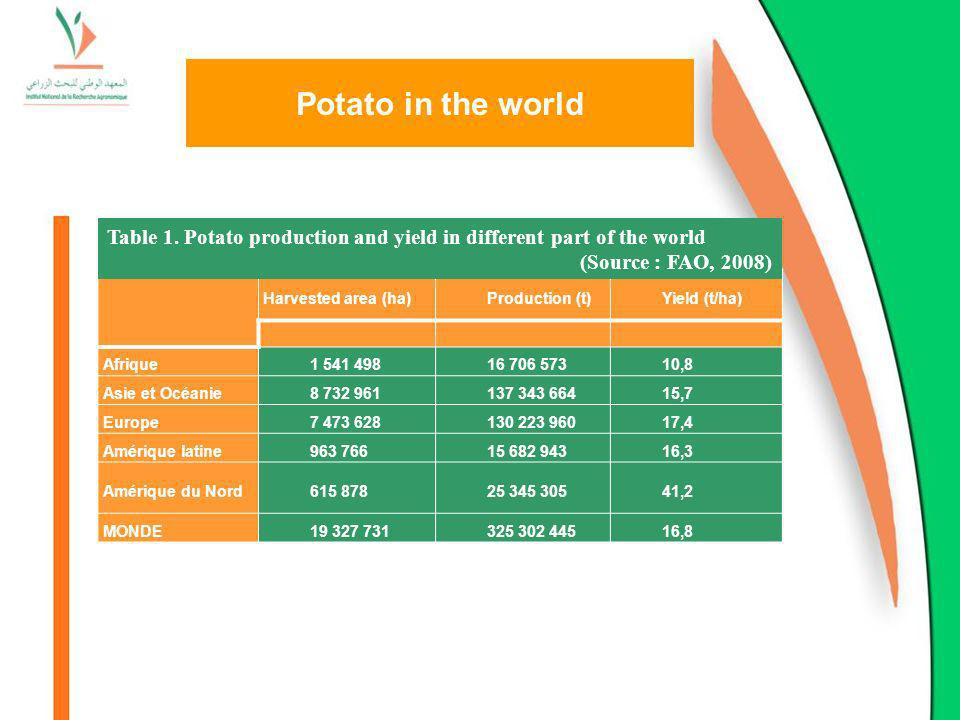 Potato in the world Harvested area (ha)Production (t)Yield (t/ha) Afrique1 541 49816 706 57310,8 Asie et Océanie8 732 961137 343 66415,7 Europe7 473 6