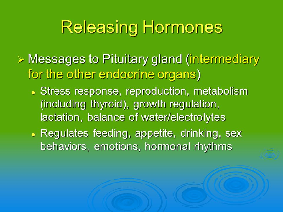 Releasing Hormones Messages to Pituitary gland (intermediary for the other endocrine organs) Messages to Pituitary gland (intermediary for the other e