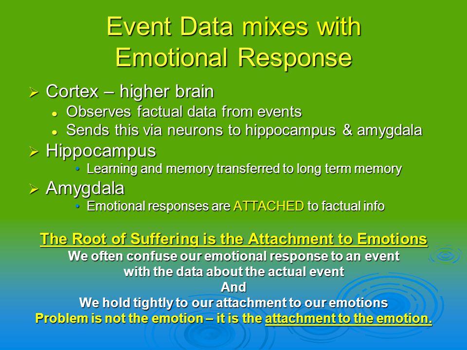 Event Data mixes with Emotional Response Cortex – higher brain Cortex – higher brain Observes factual data from events Observes factual data from even