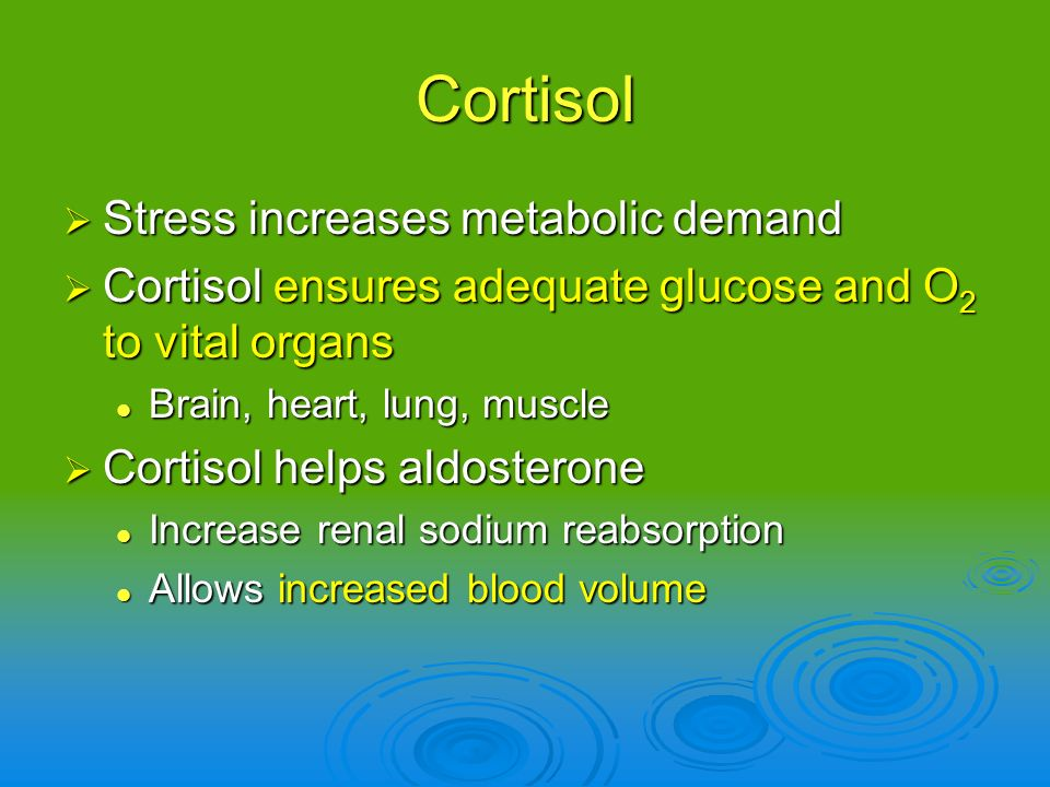 Cortisol Stress increases metabolic demand Stress increases metabolic demand Cortisol ensures adequate glucose and O 2 to vital organs Cortisol ensure