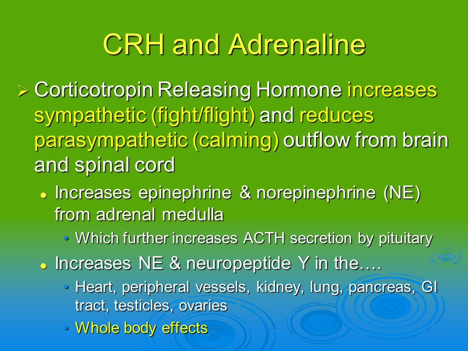 CRH and Adrenaline Corticotropin Releasing Hormone increases sympathetic (fight/flight) and reduces parasympathetic (calming) outflow from brain and s