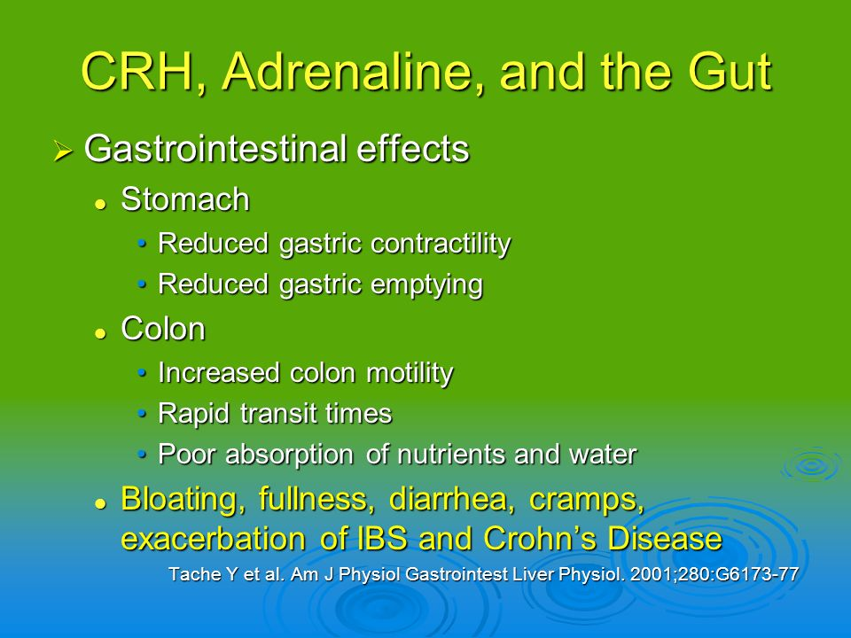 CRH, Adrenaline, and the Gut Gastrointestinal effects Gastrointestinal effects Stomach Stomach Reduced gastric contractilityReduced gastric contractil