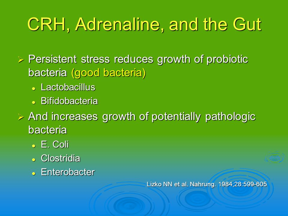 Persistent stress reduces growth of probiotic bacteria (good bacteria) Persistent stress reduces growth of probiotic bacteria (good bacteria) Lactobac