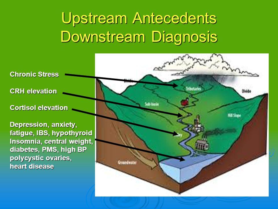 Upstream Antecedents Downstream Diagnosis Chronic Stress CRH elevation Cortisol elevation Depression, anxiety, fatigue, IBS, hypothyroid Insomnia, cen