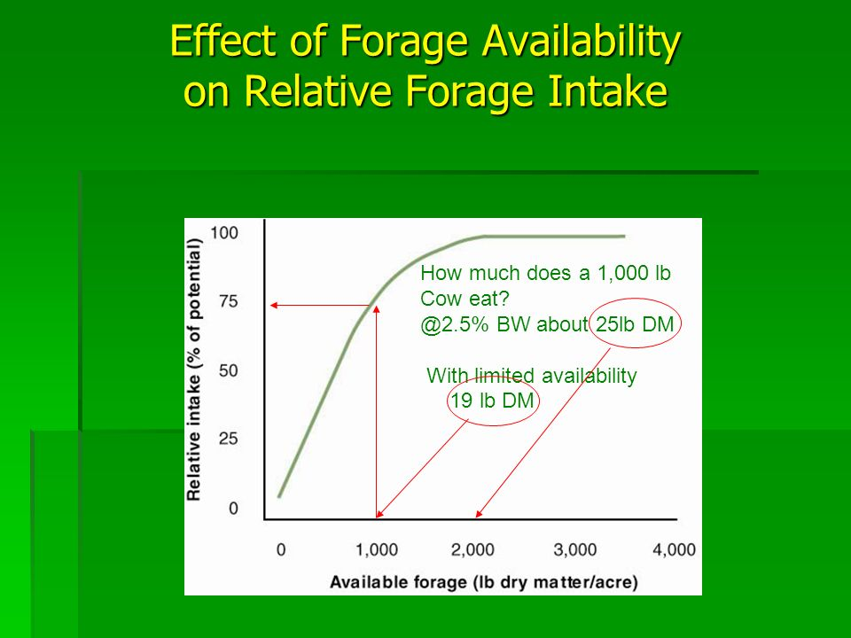 How much does a 1,000 lb Cow eat? @2.5% BW about 25lb DM With limited availability 19 lb DM Effect of Forage Availability on Relative Forage Intake
