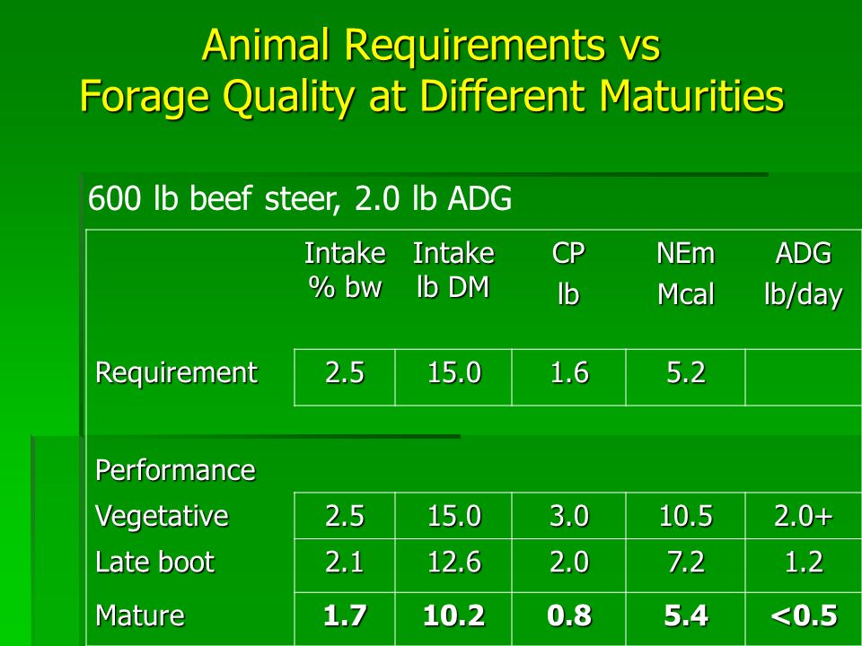Animal Requirements vs Forage Quality at Different Maturities Intake % bw Intake lb DM CPlbNEmMcalADGlb/day Requirement2.515.01.65.2 Performance Vegetative2.515.03.010.52.0+ Late boot 2.112.62.07.21.2 Mature1.710.20.85.4<0.5 600 lb beef steer, 2.0 lb ADG