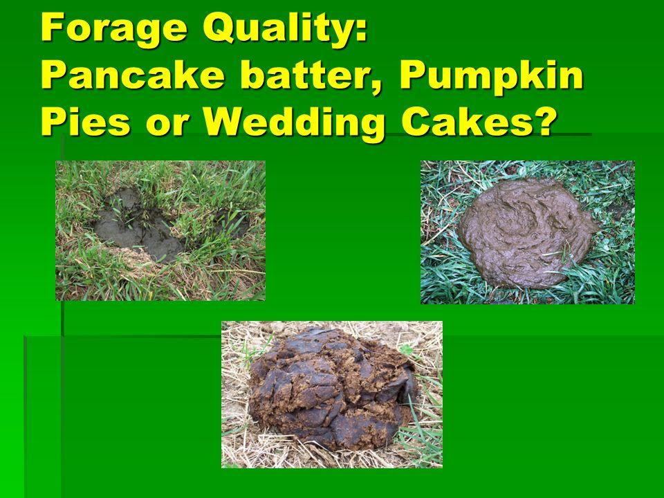 Forage Quality: Pancake batter, Pumpkin Pies or Wedding Cakes