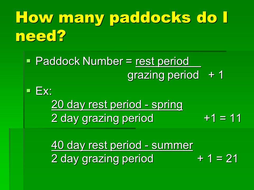 How many paddocks do I need.