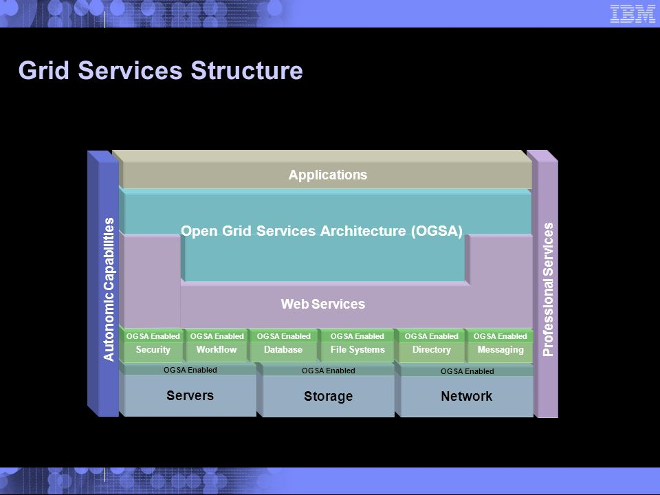 Grid Services Structure Professional Services Network OGSA Enabled Storage OGSA Enabled Servers OGSA Enabled Messaging OGSA Enabled Directory OGSA Enabled File Systems OGSA Enabled Database OGSA Enabled Workflow OGSA Enabled Security OGSA Enabled Web Services OGSI – Open Grid Services Infrastructure Grid Services System Management Sevices Open Grid Services Architecture (OGSA) Applications Autonomic Capabilities