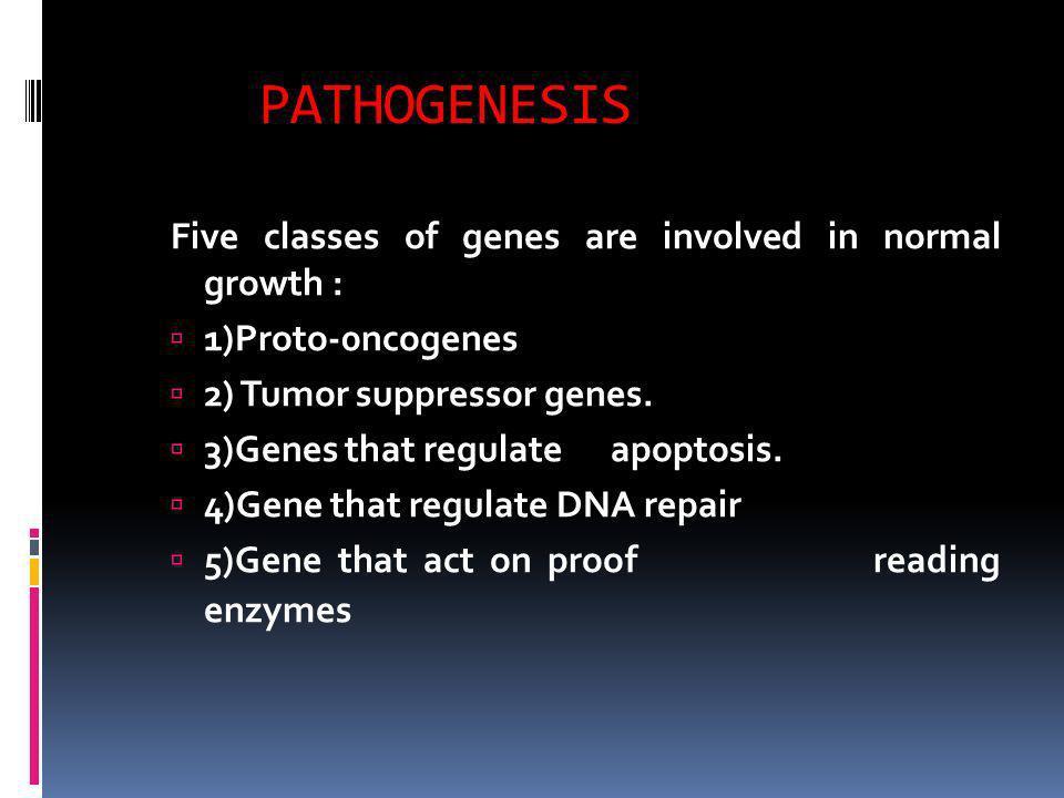 PATHOGENESIS Five classes of genes are involved in normal growth : 1)Proto-0ncogenes 2) Tumor suppressor genes. 3)Genes that regulate apoptosis. 4)Gen