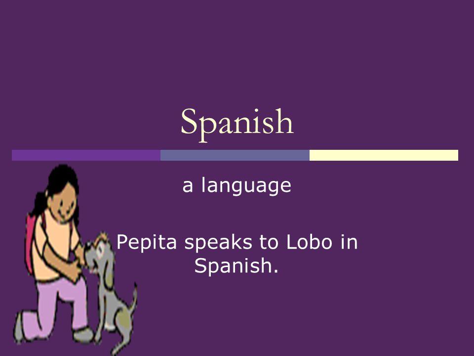 Pepita Talks Twice Vocabulary