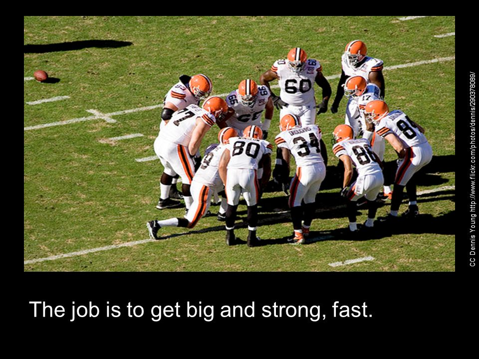 The job is to get big and strong, fast. CC Dennis Young http://www.flickr.com/photos/dennis/290378089/
