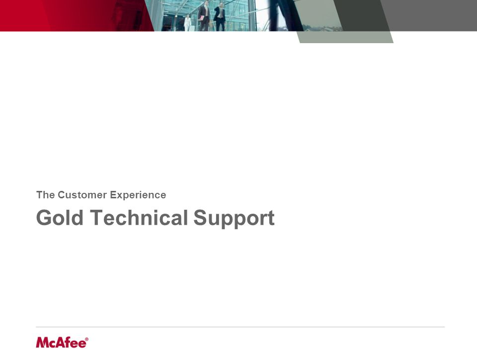 Gold Technical Support The Customer Experience