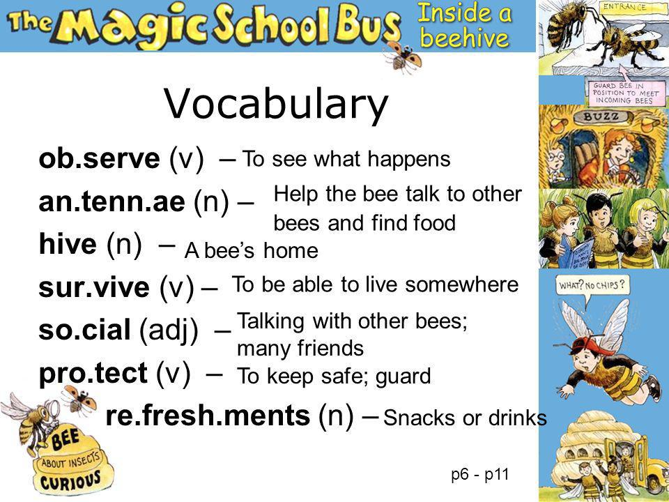 Vocabulary ob.serve (v) – an.tenn.ae (n) – hive (n) – sur.vive (v) – so.cial (adj) – pro.tect (v) – re.fresh.ments (n) – To see what happens To keep s