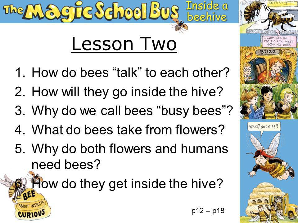 1.How do bees talk to each other? 2.How will they go inside the hive? 3.Why do we call bees busy bees? 4.What do bees take from flowers? 5.Why do both
