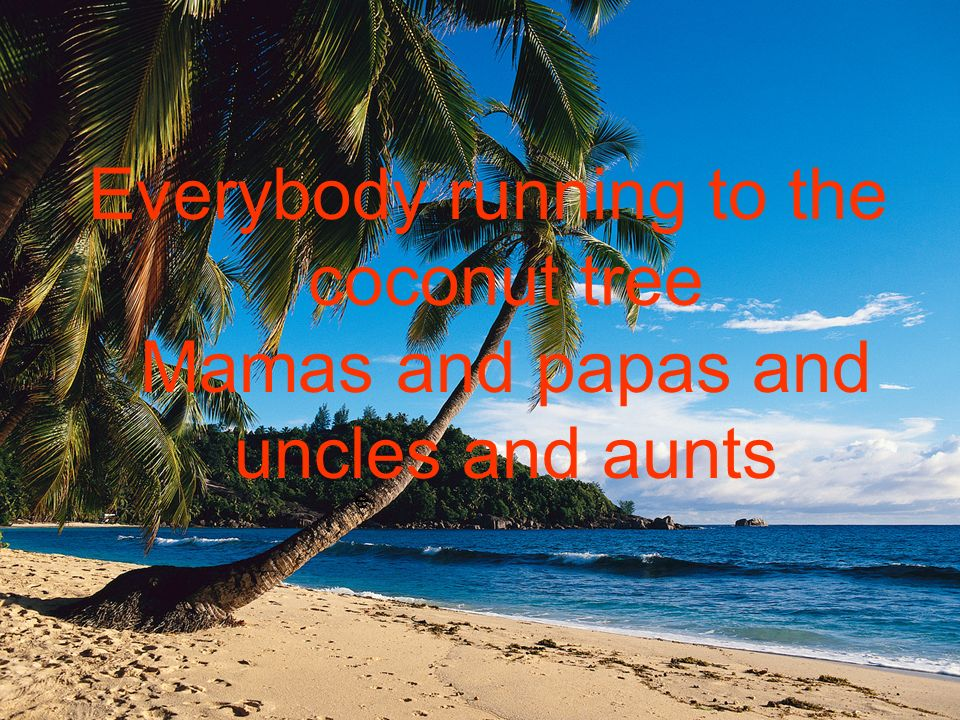 e Everybody running to the coconut tree Mamas and papas and uncles and aunts